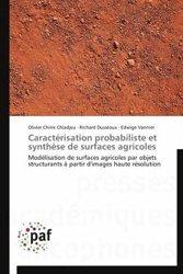Caractérisation probabiliste et synthèse de surfaces agricoles
