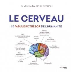 Le cerveau : le fabuleux trésor de l'humanité