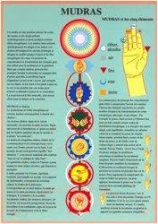 Mudras et cinq éléments
