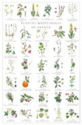 Plantes médicinales de France