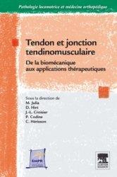 Tendon et jonction tendinomusculaire