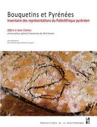 Bouquetins et Pyrénées