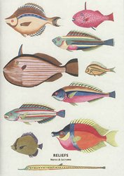 Carnet Curiosités des mers