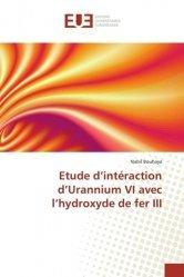 Etude d'intéraction d'Urannium VI avec l'hydroxyde de fer III