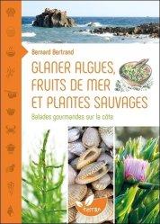 Glaner algues, fruits de mer et plantes sauvages : balades gourmandes sur la côte