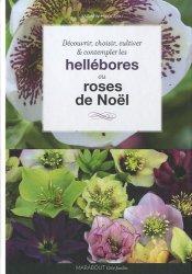 Hellébores ou Roses de Noël