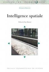 Intelligence spatiale