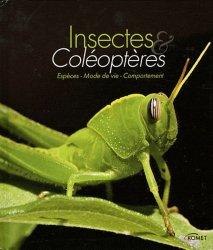 Insectes et coléoptères