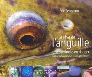 Le rêve de l'anguille