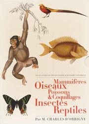 Mammifères ; Oiseaux ; Poissons & coquillages ; Insectes ; Reptiles