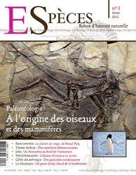 Paléontologie : à l'origine des oiseaux et des mammifères