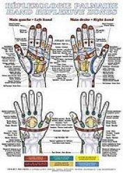 Planche de réflexologie palmaire