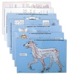 Planches d'acupuncture vétérinaire : chien et chat