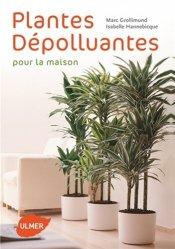 Plantes dépolluantes pour la maison