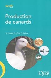 Production de canards
