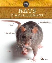 Rats d'appartement