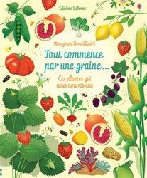 Tout commence par une graine... Ces plantes qui nous nourrissent