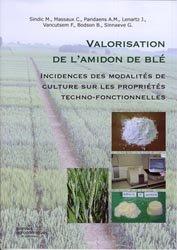 Valorisation de l'amidon de blé