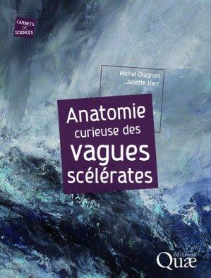 Anatomie curieuse des vagues scélérates-quae-9782759229673