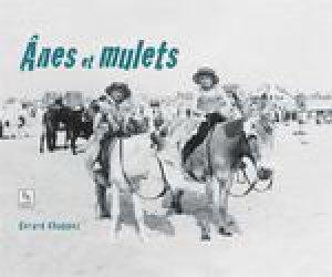 Anes et mulets-alan sutton-9782813817259