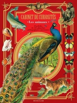 Cabinet de curiosités : les animaux-heredium-9782810422036