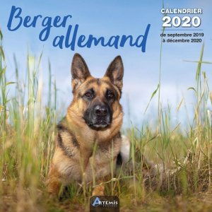 Calendrier berger allemand 2020-artemis-9782816014921