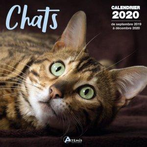 Calendrier Chats 2020-artemis-9782816015041