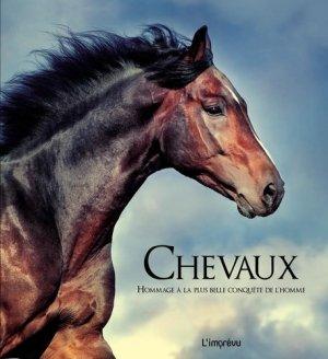 Chevaux-de l'imprevu-2301029507845
