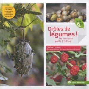 Drôles de légumes-terre vivante-9782360982592