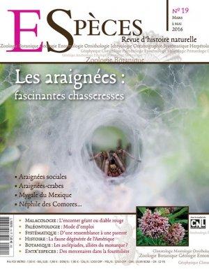 Les araignées fascinantes chasseresses-kyrnos publications-2224612288375