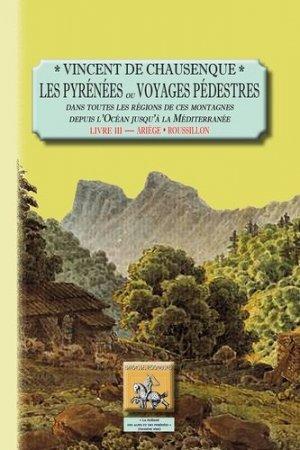 Les Pyrénées ou Voyages pédestres dans toutes les régions de ces montagnes depuis l'océan jusqu'à la Méditerranée - des regionalismes - 9782824007229