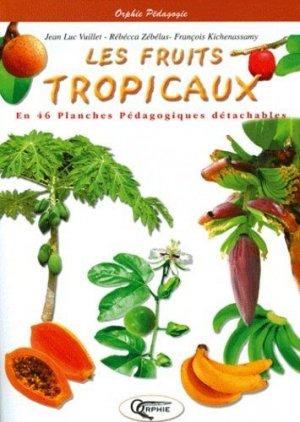Les fruits tropicaux - orphie - 9782877637206