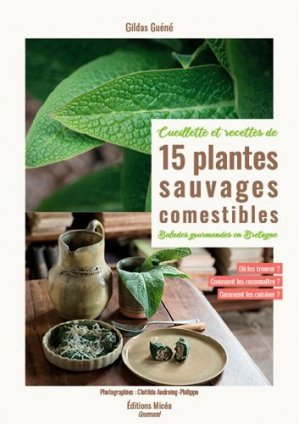 15 plantes sauvages comestibles en Bretagne-Bow-Window-9791096740109