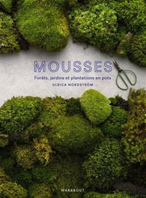 Mousse-marabout-9782501140782