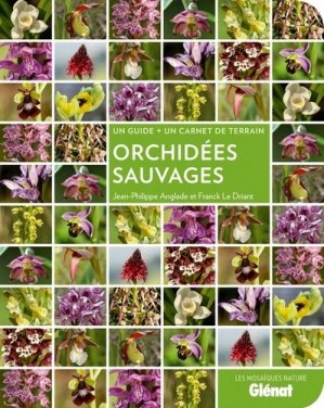Orchidées sauvages-glenat-9782344001271