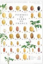 Pommes de Terre de France - gulf stream - 2225193936327