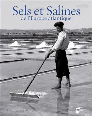 Sels et salines de l'Europe atlantique-presses universitaires de rennes-9782753565357