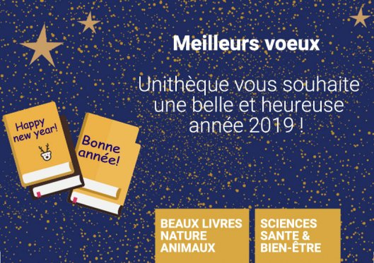 voeux-2019