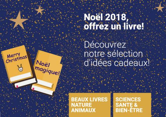 noel-2018