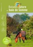 Balades nature en baie de Somme
