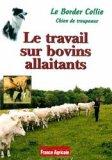 DVD Le Border Collie : le travail sur bovins allaitants