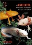 L'Axolotl