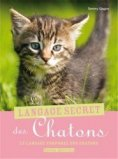 Le langage secret des chatons