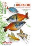 Les poissons arc en ciel