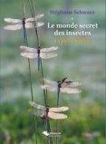 Le monde secret des insectes - En pleine lumière
