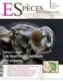 Médecine légale : les insectes au secours des experts