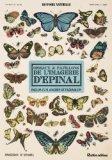 Oiseaux et papillons de l'imagerie d'Epinal