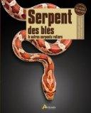 Serpent des blés et autres serpents ratiers