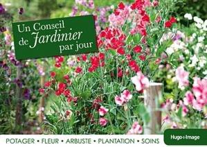 Un conseil de jardinier par jour potager fleur arbuste for Conseil de jardinier
